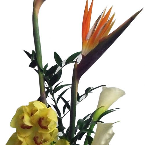 Bouquets exotiques