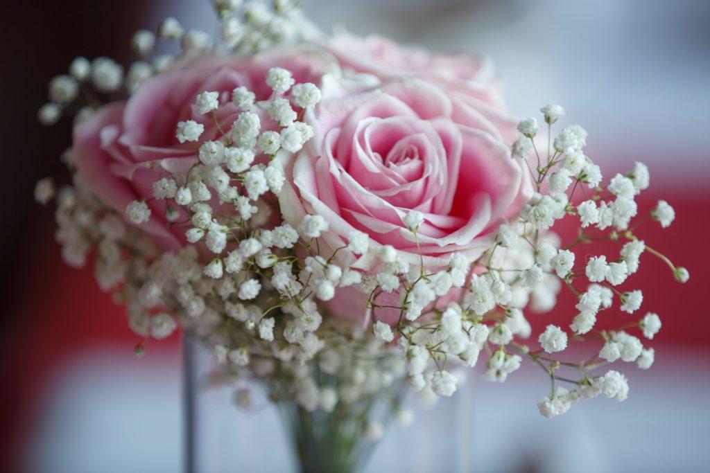 Fleurs : Maison Montcalm Fleuriste - Fleuriste Montcalm Crédit photo : Catherine Trudeau